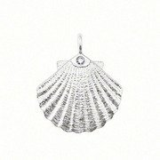 Jew :European Style 925 Silver Single Drill Small Shell Pendant Charms (1.5X1.2Cm) Fit Charm Bracele Ch012