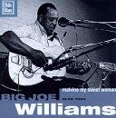 Big Joe Williams