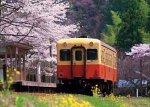500ピース のんびり旅列車 (小湊鉄道) (38cm×53cm、対応パネルNo.5-B)