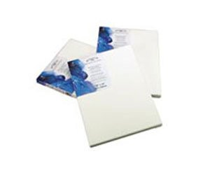 Winsor & Newton Stretched Cotton Art Canvas 8 inch x 10 inch Pack of 6