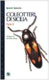 coleotteri-di-sicilia-2