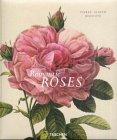 echange, troc P A Hinz, B Schulz - Romantic roses