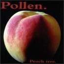 Peach Tree by Pollen