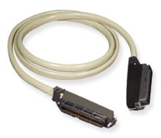 5 Foot 25-Pair Male To Male Amphenol Cable