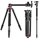 Neewer Camera Tripod Monopod with Rotatable Center Column for Panoramic Shooting - Aluminum Alloy 75 inches/191 Centimeters, 360 Degree Ball Head for DSLR Camera Video Camcorder up to 26.5 pounds (Color: red black, Tamaño: 75