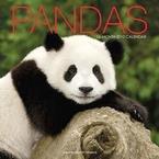 Pandas 2010 Calendar