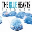 THE BLUE HEARTS TRIBUTE