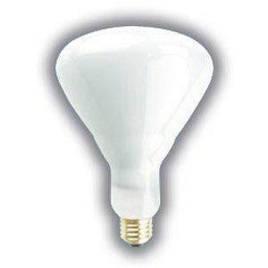 75 65 Watt Br40 Floodlight 10 000 Hours Long Life Light Bulb Br40 Flood 130 Volts