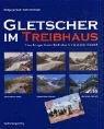 Gletscher im Treibhaus: Fotografische...