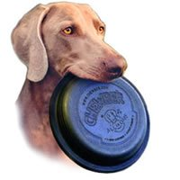 Chewber All In One Dog Frisbee Assorted Colors 8