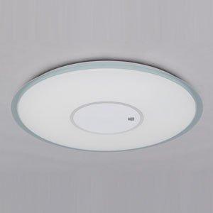 アイリスオーヤマ LEDシーリングライト ~12畳 調光・調色タイプ CL12DLA-UB1