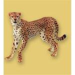 Papo - Cheetah