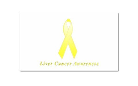 Liver Cancer Awareness Rectangular Magnet