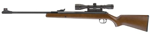 Umarex 2166164 RWS Model 34 Combo Air Rifle, 0.177 Pellet
