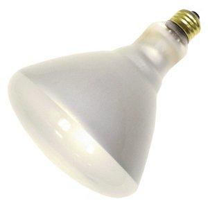 Cheap Philips 140111 - 250BR40/1 130V 12/1PRO Heat Lamp Light Bulb