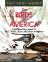 The Birds of America from Drawings Made in the United States and Their Territories: Volume 7 (0543857840) by Audubon, John James