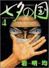 七夕の国 (4) (ビッグコミックス)