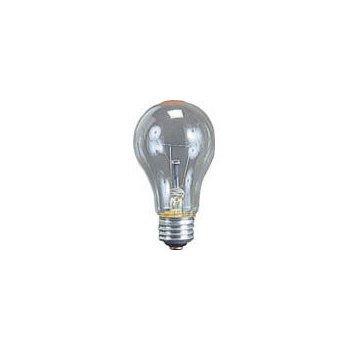 ハタヤ 耐振電球100W (ILI、KL型用) TD100