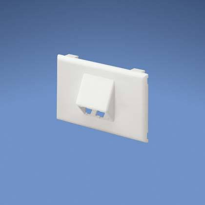 Panduit T70Fh2Iw 2-Port 1-Gang Sloped Raceway Faceplate, Off White