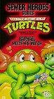 Teenage Mutant Ninja Turtles: Raphael Meets His Match [VHS] - 1