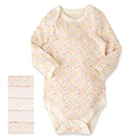 5 Pack Pure Cotton Assorted Bodysuits