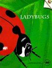 Ladybugs (Old Edition) (Great Explorations in Math and Science)
