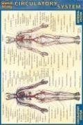 Pocket Circulatory System Laminated Reference Guide (Quickstudy)