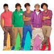 AG1D One Direction Cardboard Cutout Standee Standup Poster Harry Niall Louis Liam Zayne by MovieCutouts.com