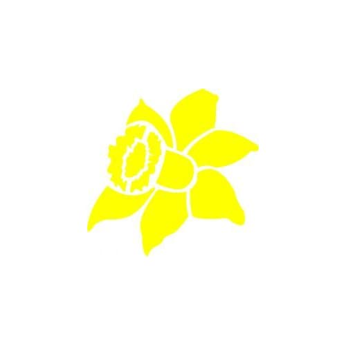 Amazon.com : Tattoo Stencil - Daffodil - #L140 : Tattooing Products