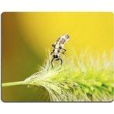 msd-tappetino-per-mouse-in-gomma-naturale-gioco-immagine-id-26683866-le-larve-a-forma-di-coccinella-