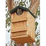 Songbird Essentials Screech Owl House Nest Box