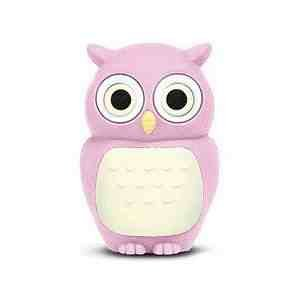 8GB Baby Owl Pink USB 2.0 High Speed Silicon Flash Memory Drive Disk Stick Pen Support Windows and MacOS Great Gift (8GB PINK) by EASYWORLD