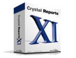 Crystal Reports XI Professional Edition (Professional Solution Suite Upgrade w/Crystal Single Case TS) (PC)