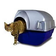 Self Cleaning Litter Box Regular