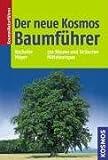 - Mark Bachofer, Joachim Mayer
