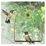 Songbird Essentials SEHHHUMS Copper Hummingbird Swing