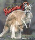 What is a Marsupial? (The Science of Living Things) (0865059551) by Bobbie Kalman