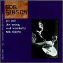Joy Joy!: The Young And Wonderful Bob Gibson
