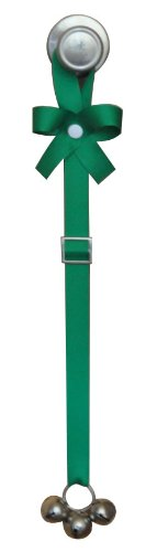 Potty Time Chimes with The Perfect Potty Training Solution DVD, Adjustable, Solid Emerald