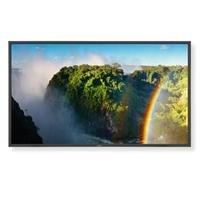 NEC Display P551 LCD Monitor - 55