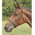 Inhand Bridle with brass clincher front|Pony
