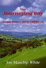 The Journeying Boy: Scenes from a Welsh Childhood