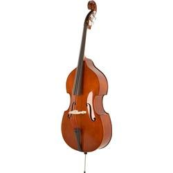 Scherl and Roth SB900 1/4 Size Double Bass Outfit with French Bow (Standard)