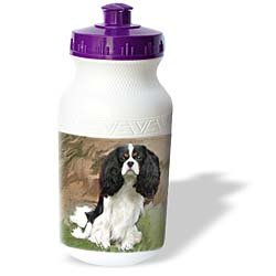Dogs Cavalier King Charles Spaniel - Cavalier Spaniel - Water Bottles