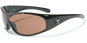 Sunglasses Eagle Logo U2 with Pouch