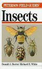 A Field Guide to Insects America Nort...