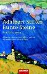 Bunte Steine: Erzählungen