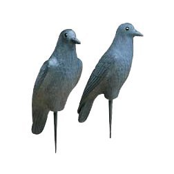 Flambeau Predator Hard Crow Decoy (Pack of 12)
