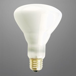 Br30 Floodlight Long Life Light Bulb 65 Watts 20 000 Hours 120 Volts Krypton Incandescent Flood