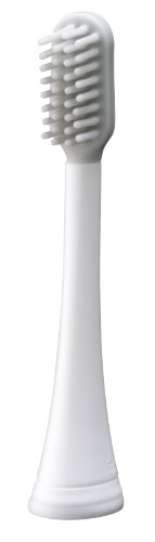 Panasonic WEW0933W Replacement Point and Silicon Brush for EW-DL80-S and EW-91-W Tooth Brush